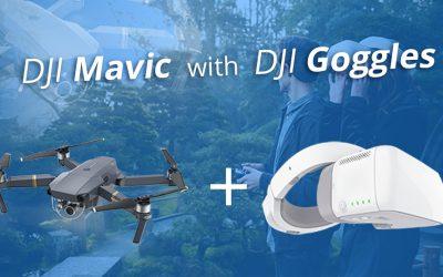 DJI Mavic Pro + 2 Goggles